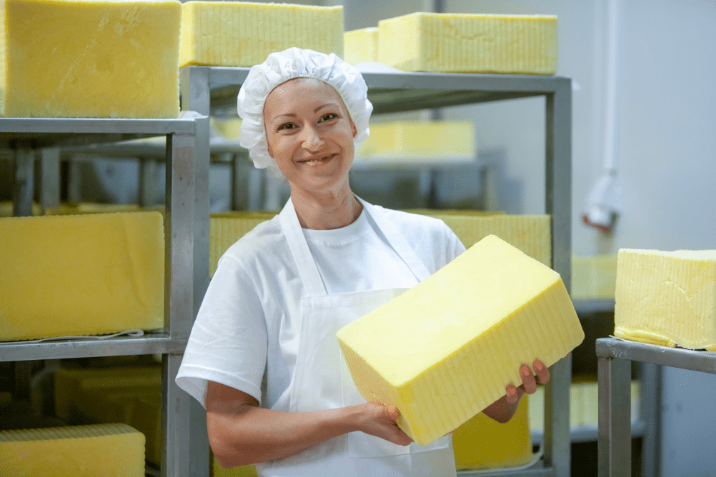 A woman in a hairnet holds a large block of cheese.  Bacteria in dairy production are necessary in the cheese making process.